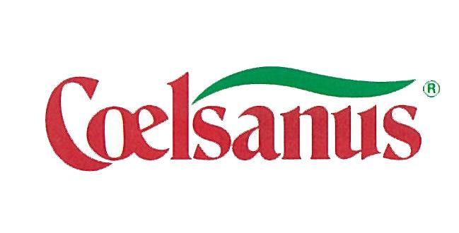Coelsanus/チェルサヌス
