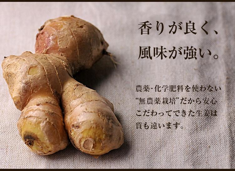 古根生姜 農薬・化学肥料を使わない無農薬栽培だから安心こだわってできた生姜は質も違います。