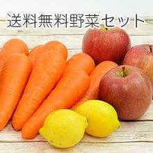 送料無料野菜セット