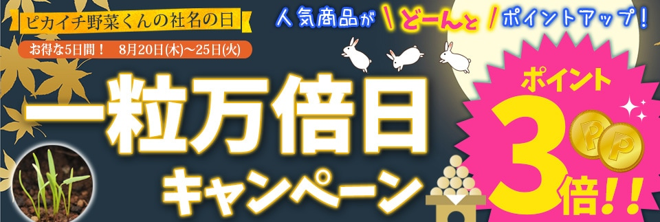 一粒万倍日キャンペーン20〜25