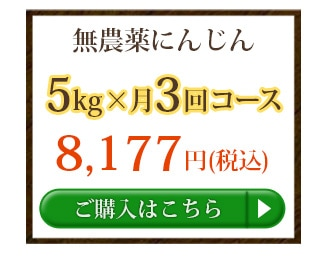 無農薬にんじん5kg×3回
