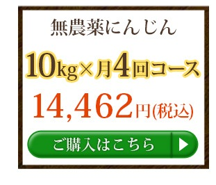無農薬にんじん10kg×4回