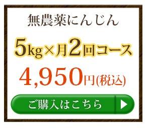 無農薬にんじん5kg×2回