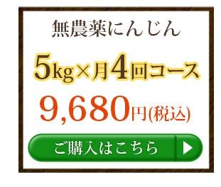 無農薬にんじん5kg×4回