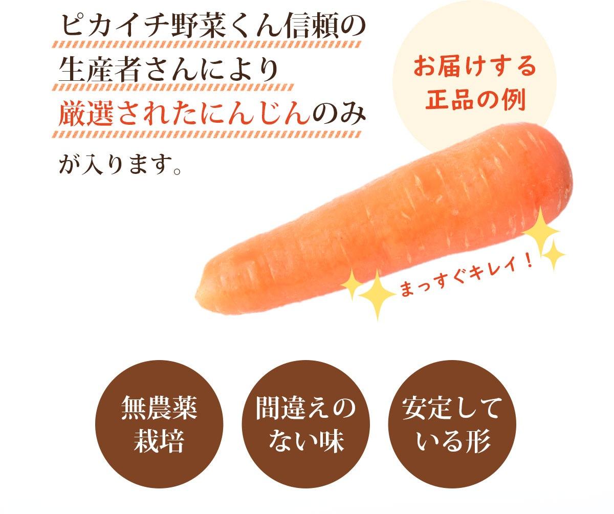 ピカイチ野菜くん信頼の生産者さんより厳選されたにんじんのみが入ります