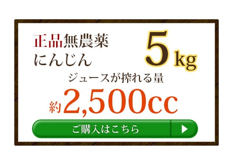 無農薬人参5kg