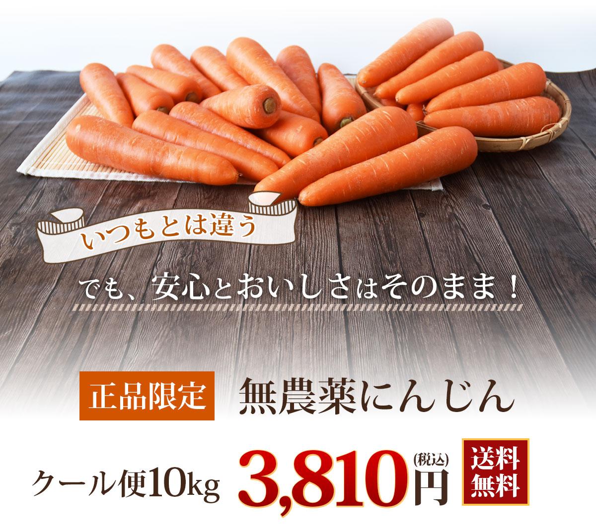 無農薬にんじん常温便10kg送料無料