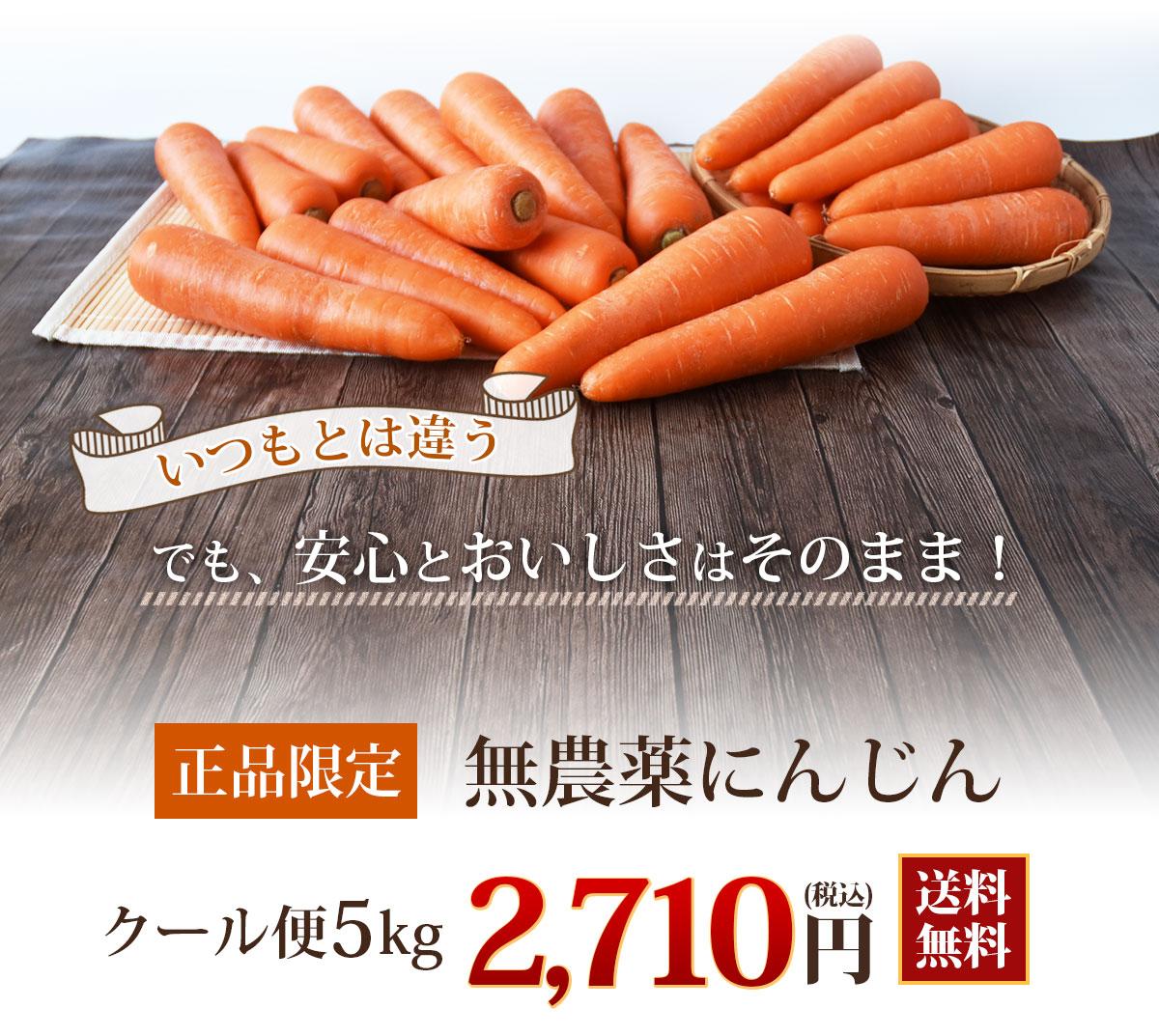 無農薬にんじん常温便5kg送料無料
