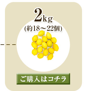 レモン2kg