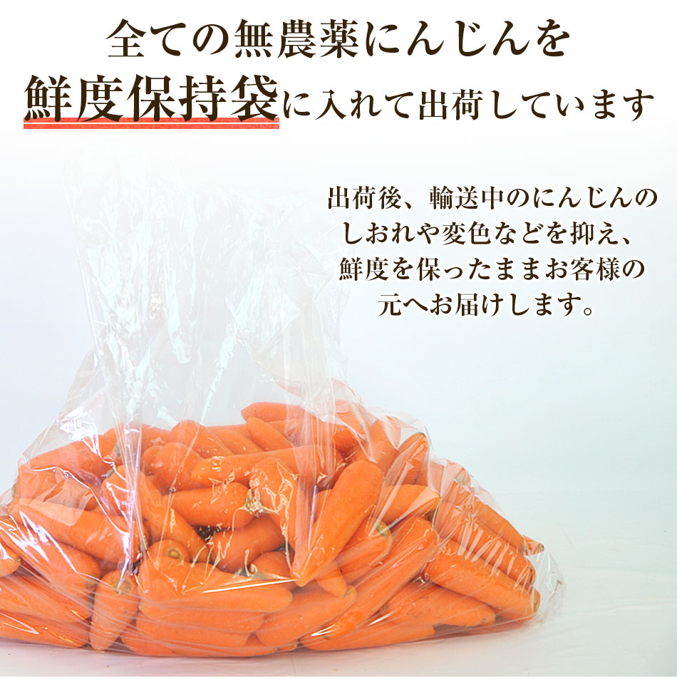 全ての無農薬にんじんを鮮度保持袋に入れて出荷しています