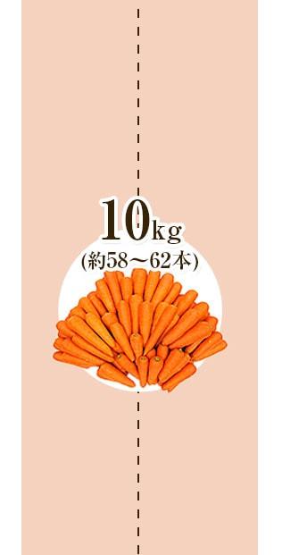 にんじん10kg_2
