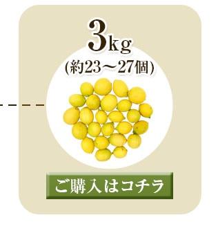 レモン3kg