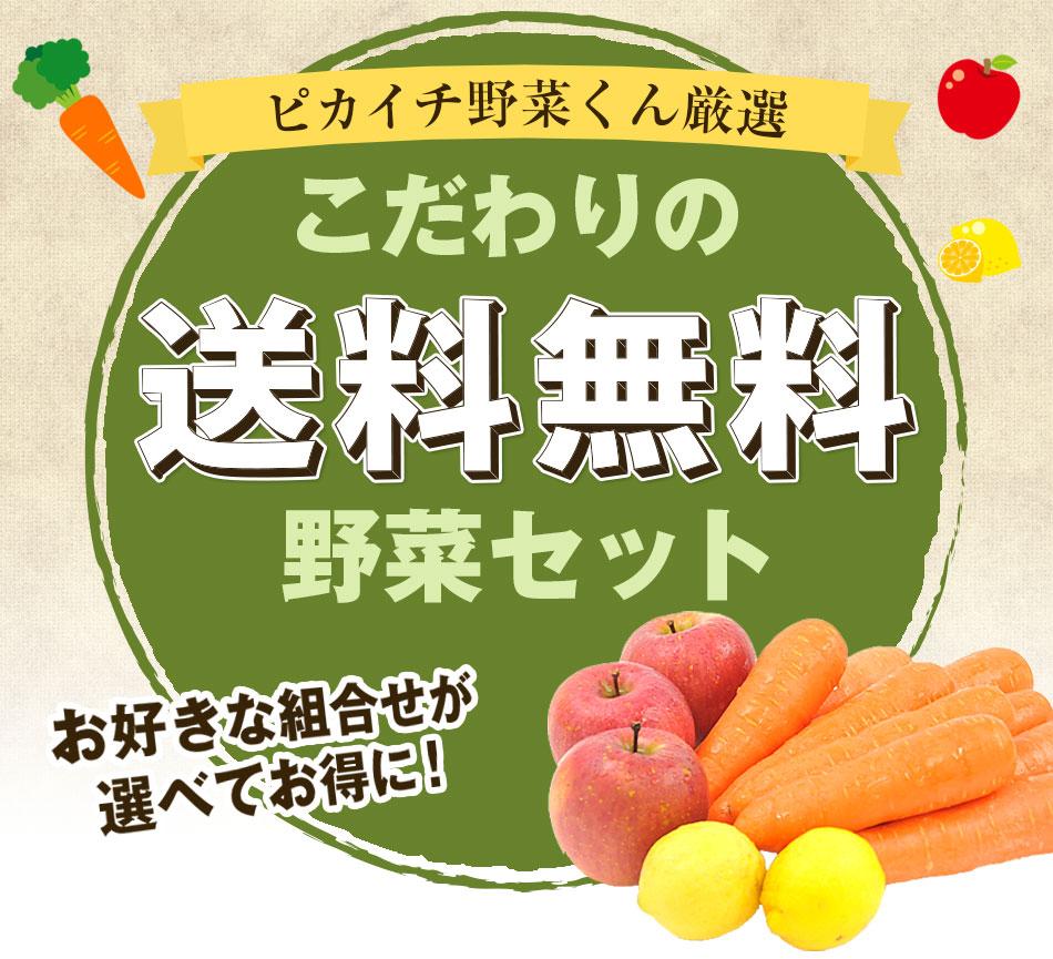 お好きな組合せが選べてお得に送料無料野菜セット