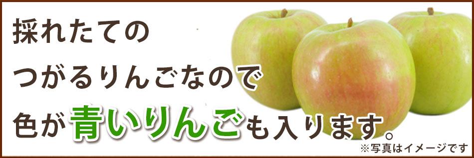 採りたてつがるりんご