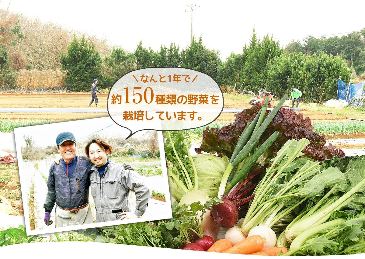 東部メディカルセンター株式会社、伊豆メディカル農園