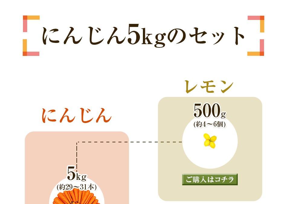 人参5kg+レモン500g