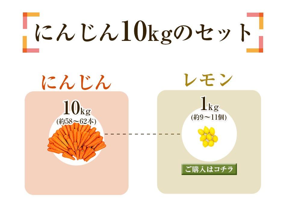 人参10kg+レモン1kg