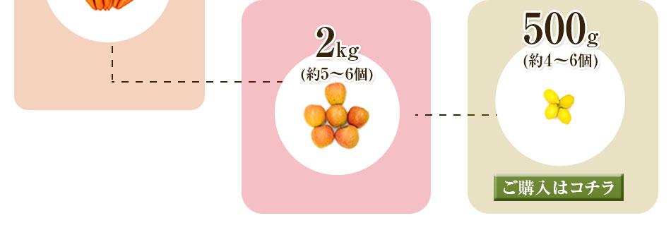 にんじん3kg+りんご2kg+レモン500g