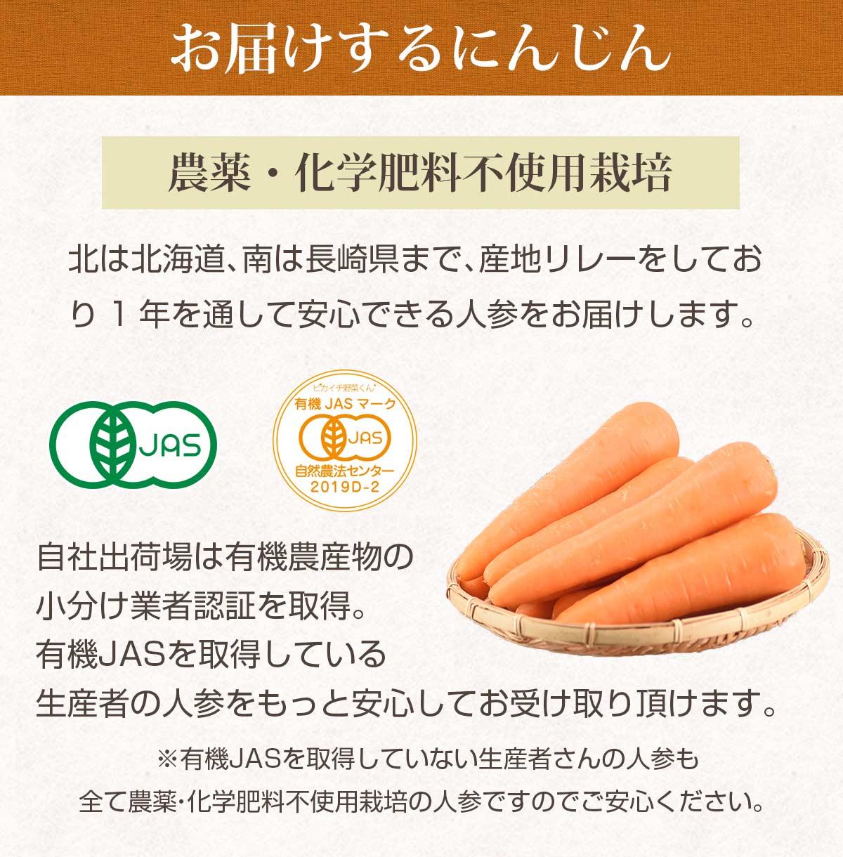 農薬・化学肥料不使用栽培にんじん