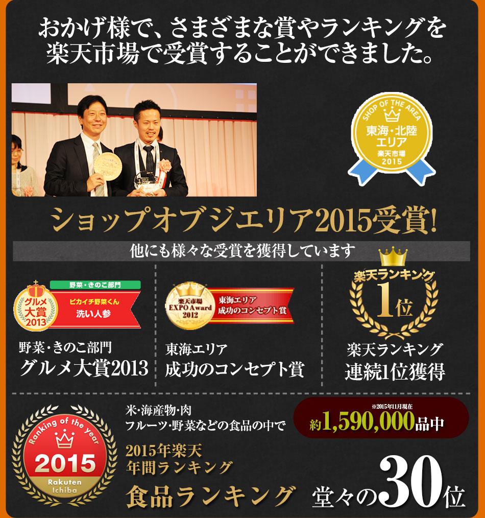ショップオブジエリア2015受賞