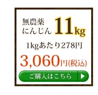 無農薬にんじん11kg