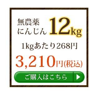 無農薬にんじん12kg