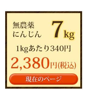 無農薬にんじん7kg