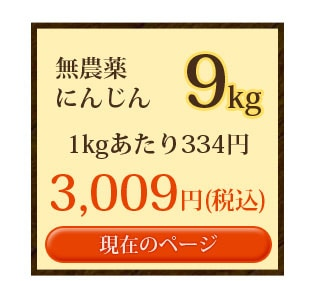 無農薬にんじん9kg