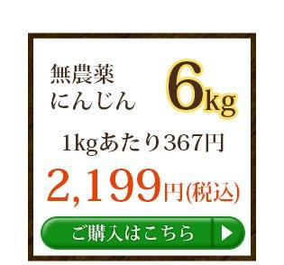 無農薬にんじん6kg