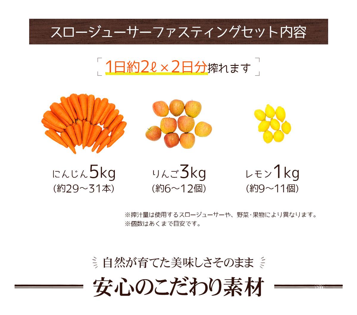 スロージューサーファスティングセット内容「1日約2リットル×2日分搾れます」にんじん 5kg、りんご 3kg、レモン 1kg