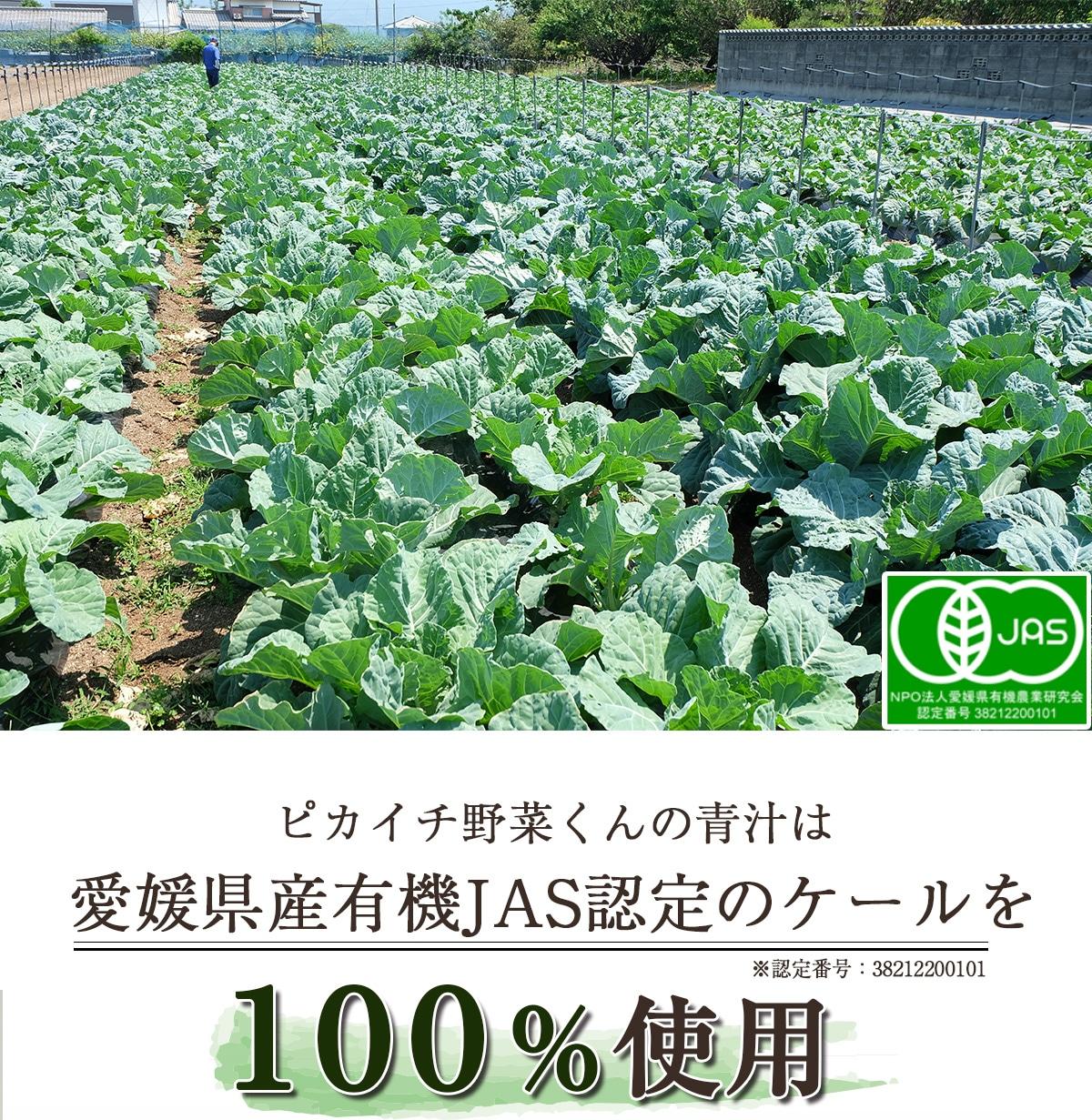 ピカイチ野菜くんの青汁は愛媛県産有機JAS認定ケールを100%使用