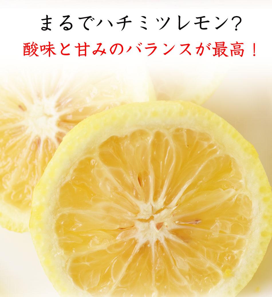 まるでハチミツレモン?酸味と甘みのバランスが最高!