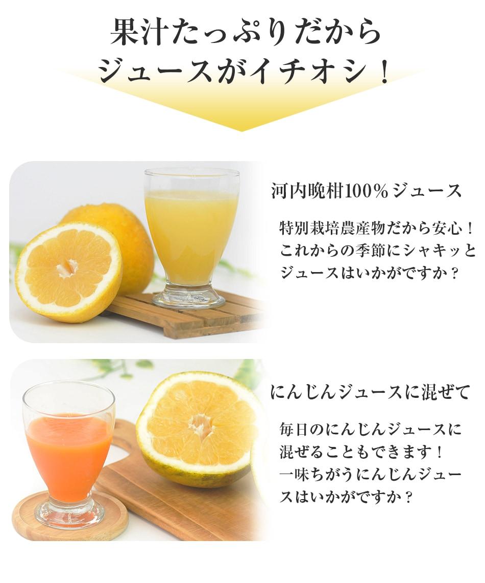 果汁たっぷりだからジュースがイチオシ!