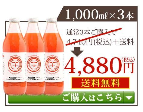 繊維入りにんじんりんごレモンジュース1000ml×3本