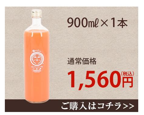 常温ジュース900ml×1本