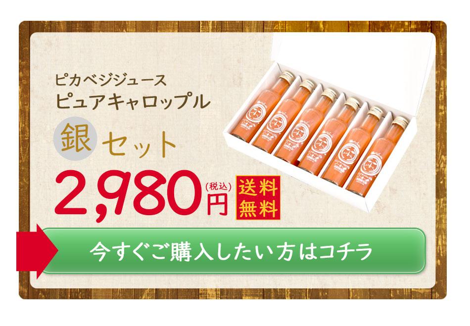 ピカベジジュースピュアキャロップル銀セット