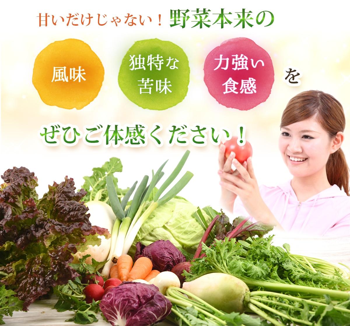 野菜本来の風味独特な苦み力強い食感をぜひご体感ください