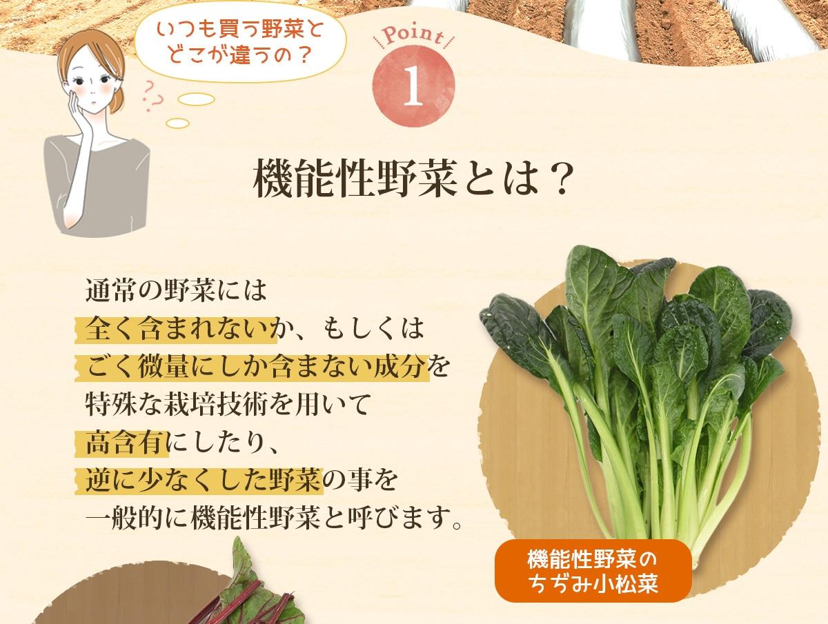 機能性野菜とは通常の野菜には含まれない成分を含ませたり逆に少なくした野菜