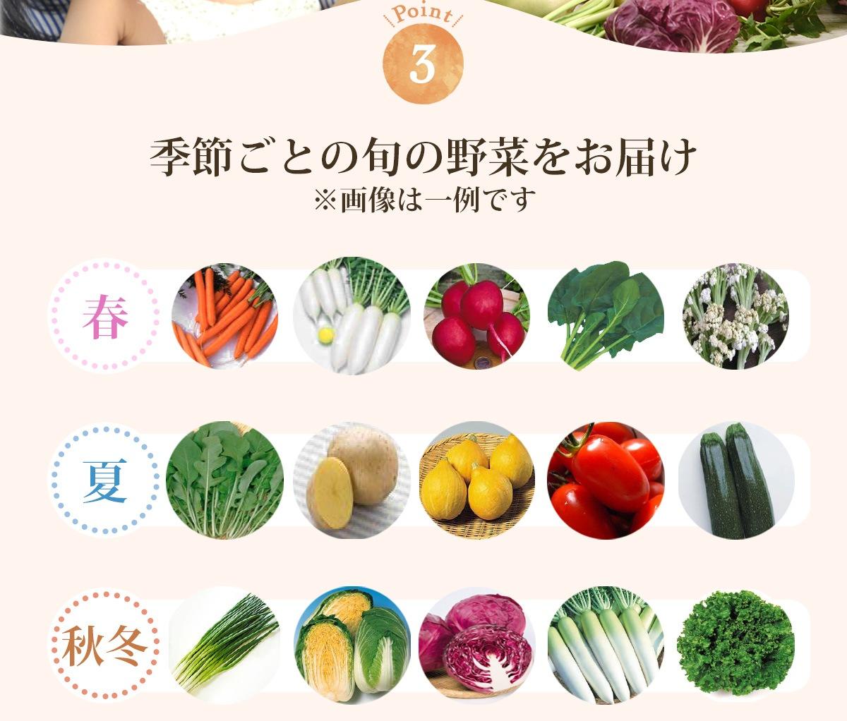 季節ごとの旬の野菜をお届けします