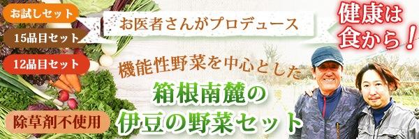機能性野菜メディカル野菜セット