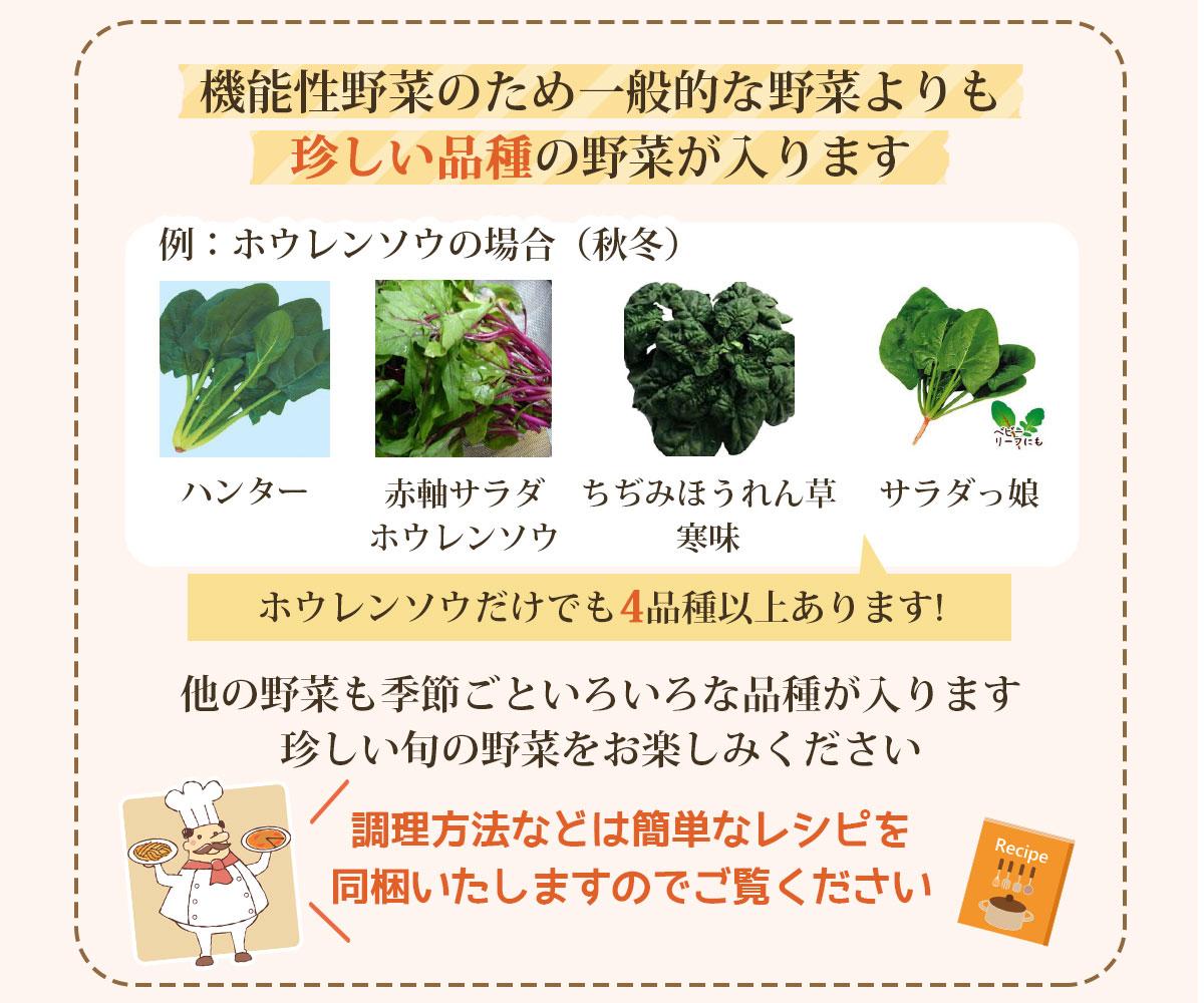 機能性野菜のため、一般的な野菜より珍しい品種の野菜が入ります