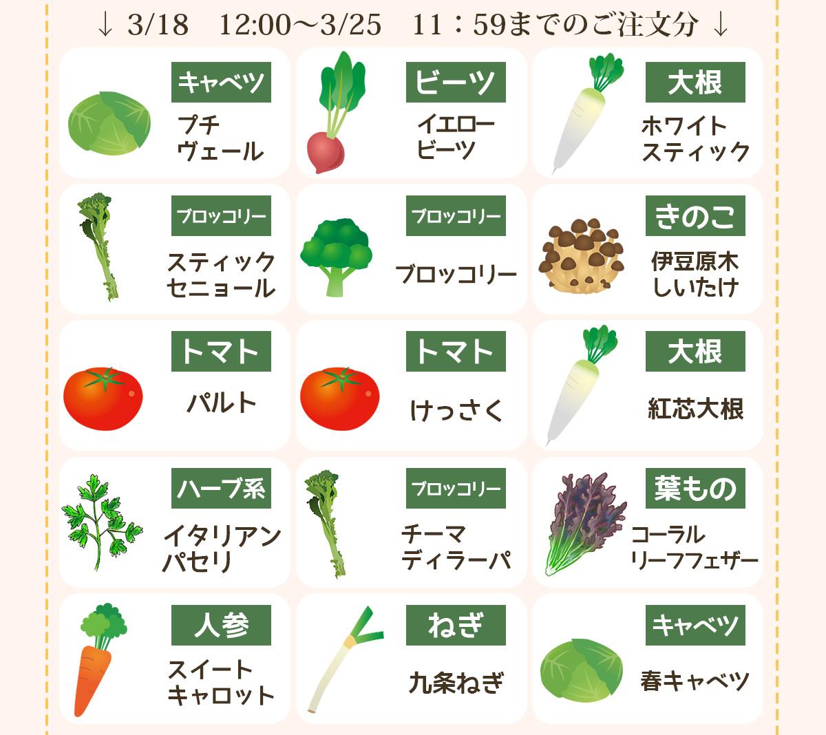 今が旬の野菜はこちら