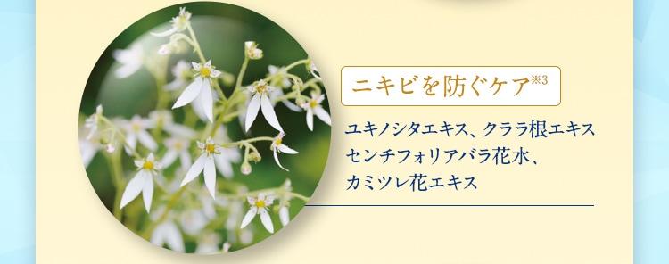 ニキビを防ぐケア※3 ユキノシタエキス、クララ根エキス センチフォリアバラ花水、 カミツレ花エキス