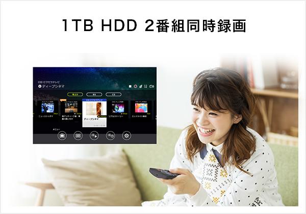 1TB HDD 2番組同時録画
