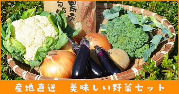 加藤さんの美味しい野菜