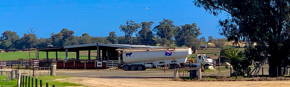 オーストラリアの牧場