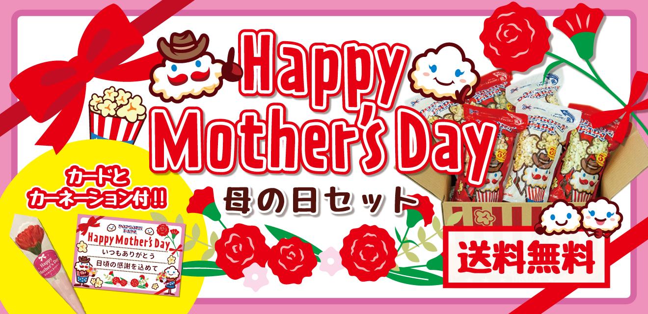 【お母さんありがとう】母の日セット《送料無料》【ミニカーネーション付】