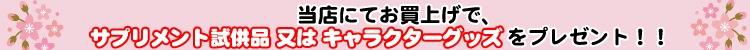【特典1】当店にてお買い上げにて「キャラクターグッズ」等プレゼント!