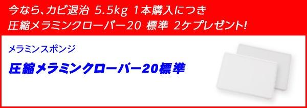 カビ退治 5.5kg 特典