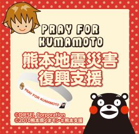 熊本地震災害復興支援